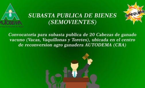 SUBASTA PUBLICA DE BIENES (SEMOVIENTES)