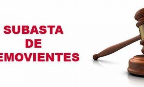 SUBASTA PUBLICA DE BIENES (SEMOVIENTES) JUNIO 2019
