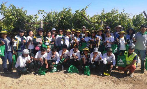 (Video) Escolares de Tarucamarca conocieron Vivero vitivinícola de Autodema, Centro de Reconversión Agrícola y bocatoma R1
