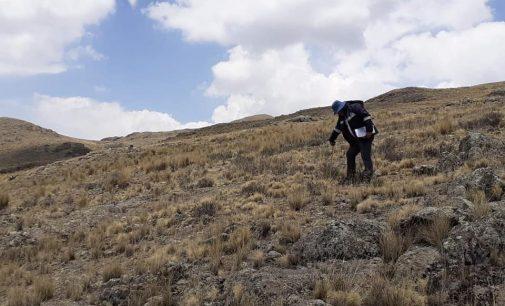Autodema realiza verificación de calidad de suelo en anexo de Pusa Pusa