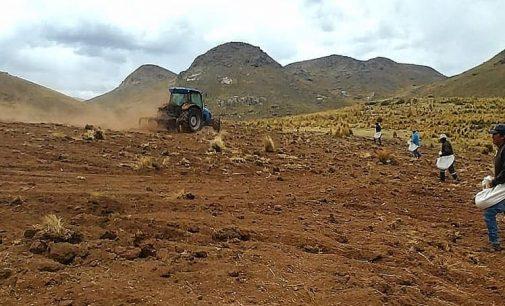 Autodema realiza siembra como parte del programa de instalación de pastos mejorados