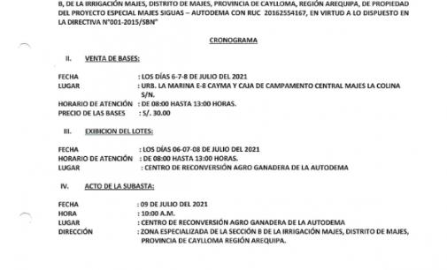 SEGUNDA SUBASTA RESTRINGIDA N° 002-2021-GRA-PEMS